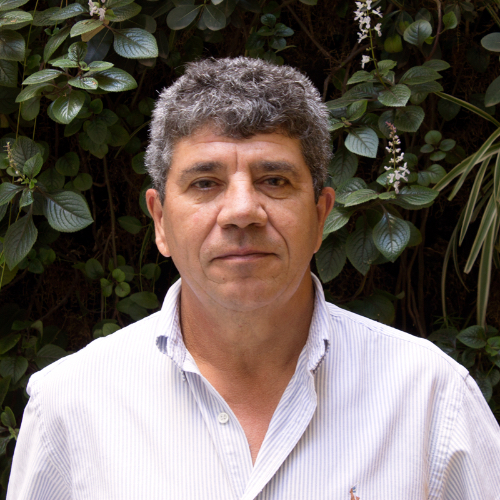 Ing. Pablo Lozano