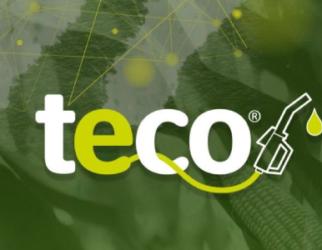 TECO 2020
