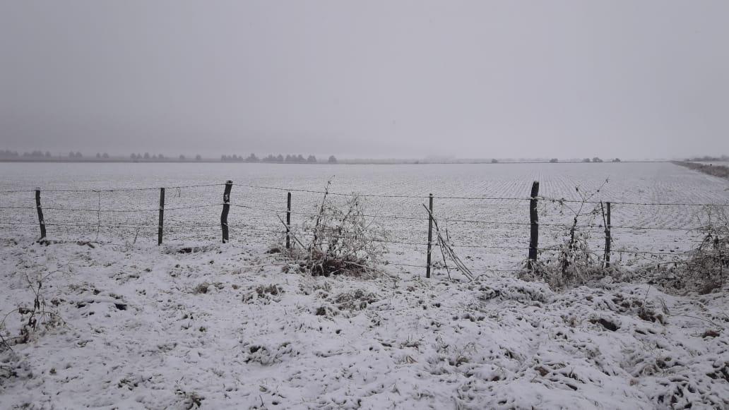 Nieve en Almafuerte